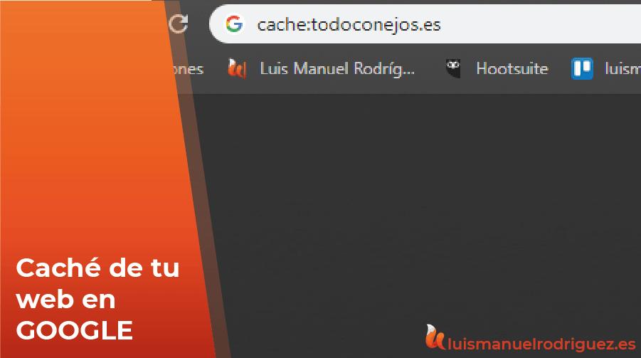 ¿Cómo saber la última vez que Google pasó por mi web? Caché Google